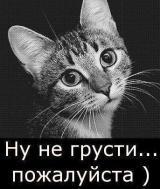 Не грусти!