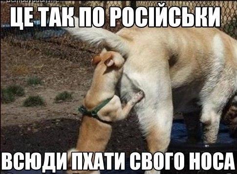 Лицо фашизма, ватный комикс, Новоукраина. Свежие ФОТОжабы от Цензор.НЕТ - Цензор.НЕТ 5686
