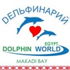Дельфинарий Dolphin World Египет, Макади Бей