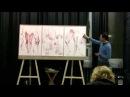Первая часть мастер-класса по анатомии