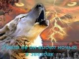 одинокий волк... самая красивая в мире мелодия...
