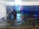 Фильтр воды AQUAEL для аквариума .. Причина затопления.