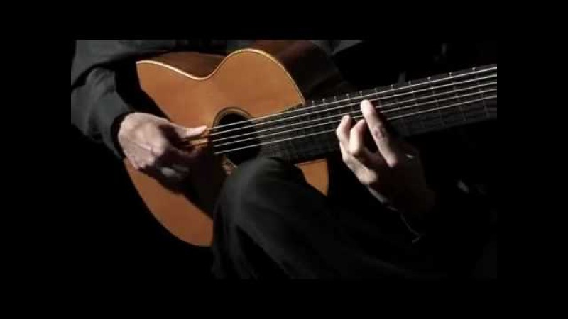 Flamenco guitar - Livio Gianola - Sicomoro