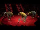 Ёлка в цирке на Цветном - 2 (2011-2012) HD
