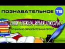 Нам нужна иная школа Познавательное ТВ Илья Михнюк