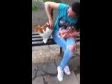 Одноглазый, уличный кот добряк. Ласковое чудо.