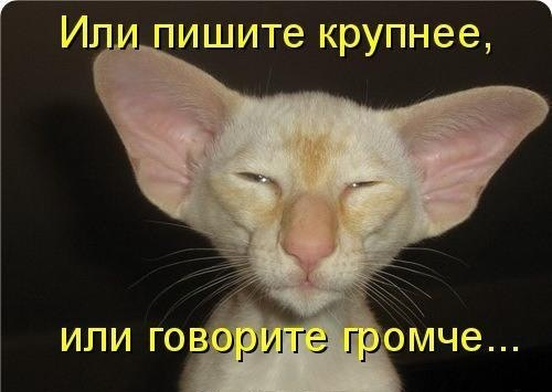PY3XRrajR_0.jpg