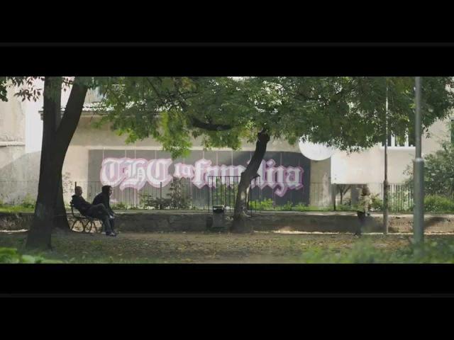 THCF - Snovi kao život stvarni
