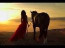 Выйду ночью в поле с конём… Удивительно красивый ролик