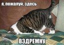 Maxim Babin фото #39