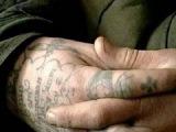 Сучья Война: Вор в законе Черкас - Анатолий Черкасов