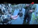 Охота на утку Утиная лихорадка