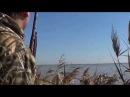 Охота на уток одного дня, октябрь 2014 г