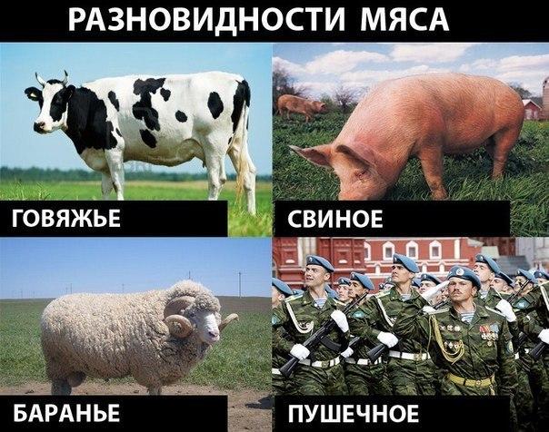 """Чтобы разговор """"нормандской четверки"""" состоялся, нужно наработать """"мясо"""", - Песков - Цензор.НЕТ 4233"""