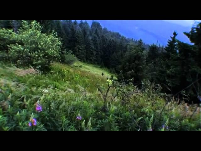Дует Курінь - Гори мої, гори. Повстанська лірика