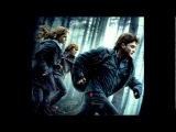 OST Harry Potter - Dobby