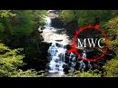 музыка без авторских прав MWC Dream Fall Dream Ustra 20