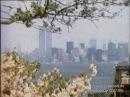 NYC 1983 and 1986 original footage