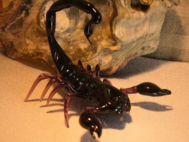 Скорпион - его седьмое чувство улавливать вибрацию в воздухе.