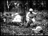 Охота на львов / Loevejagten / 1907