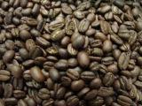 Babylon Zoo - Caffeine