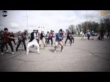 Самый крутой танцевальный Флешмоб в Коломне 3 мая 2015 г. Wings for Life World Run