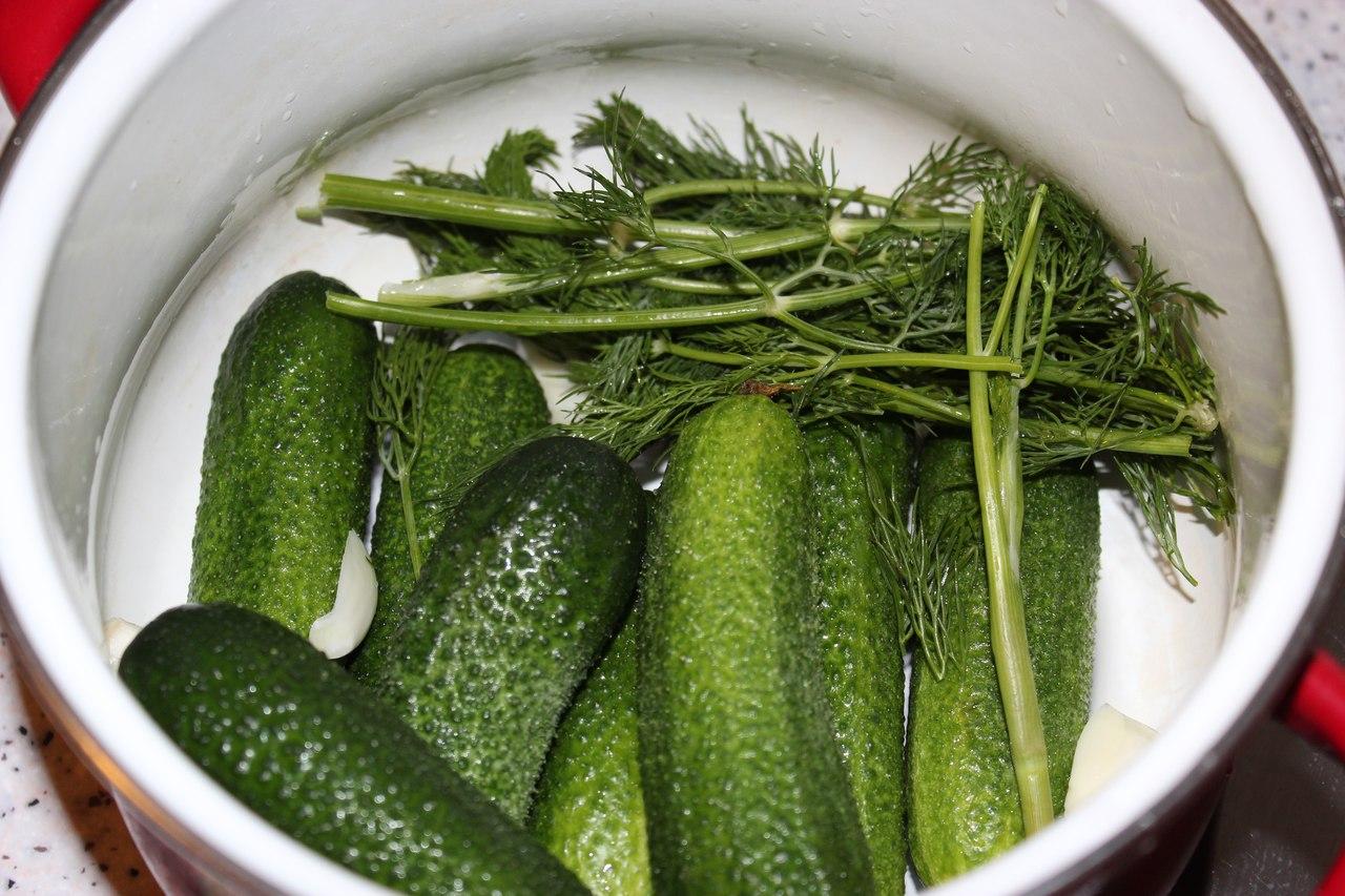 Рецепт малосольных огурцов хрустящих с холодной водой 67
