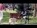 Aleksandar Belov - Dobro Utro Dobri Luge (Official Video )2015