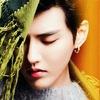 EXO KRIS ✹ Wu Yi Fan ✹ FANtareS