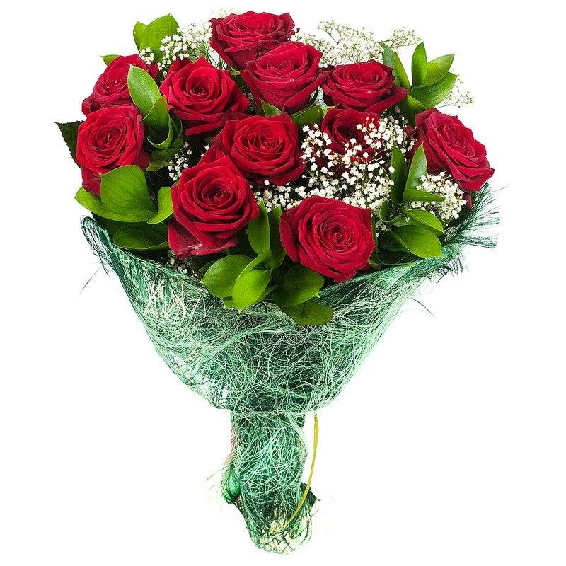 Цветы любимой купить чилийское масло розы купить