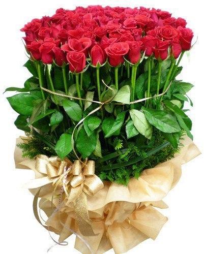 Купить розы цветы недорого