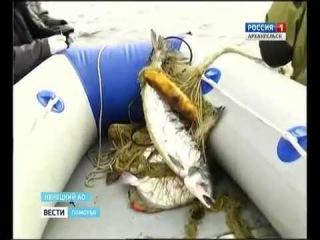 В Ненецком округе объявили охоту на браконьеров