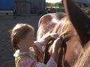 Лошади клип