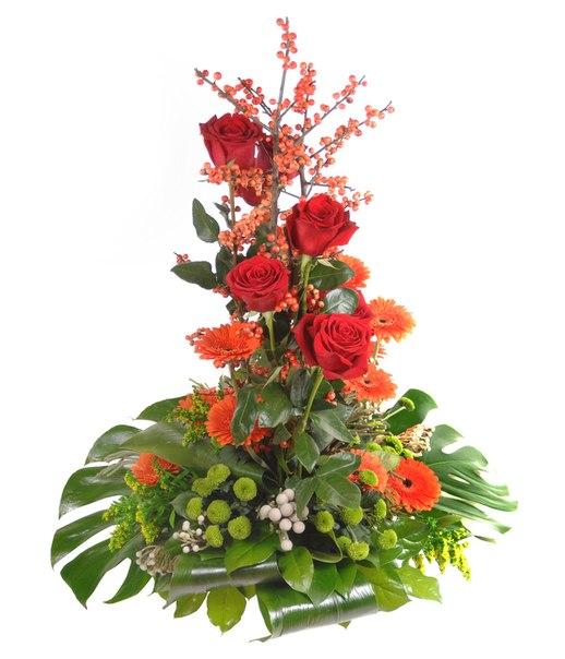 Фото картинок цветов для мужчины