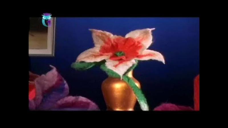 Мокрое валяние цветка из шерсти. Нарцисс, гвоздика. Мастер класс. Наташа Фохтина