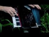 #Magic_of_rhythm #harmonium