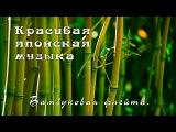 Красивая японская музыка - Бамбуковая флейта.