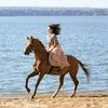Сказочные фотосессии с лошадьми!