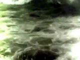 Жан Татлян Море зовёт