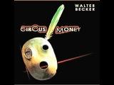 Walter Becker - Upside Looking Down