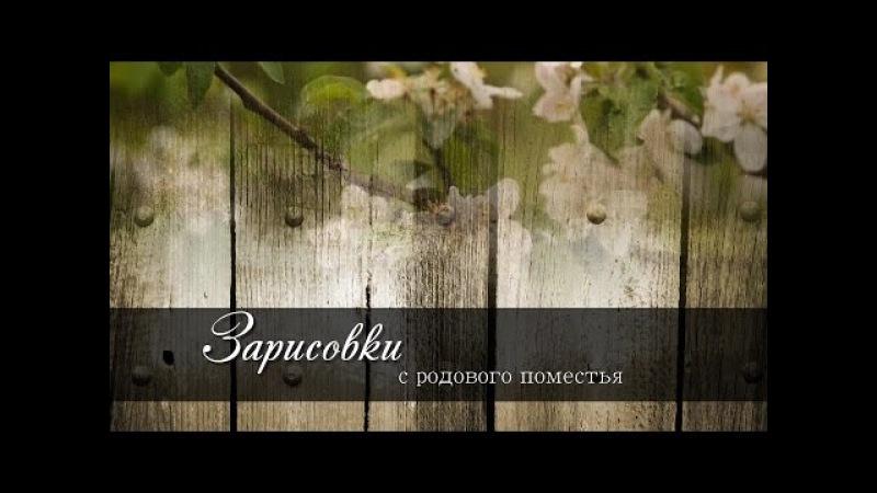 Зарисовки с РП выпуск 4, Александр и Екатерина Матрухович