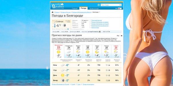 Прогноз погоды в Белгороде на 1 дней — Яндекс Погода