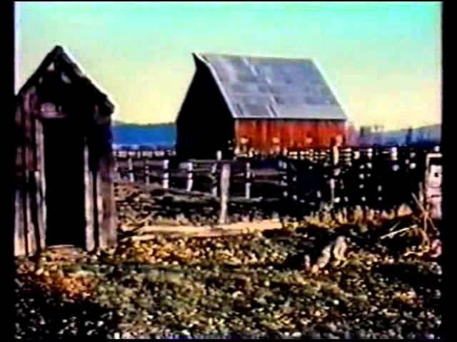 The Mongreloid (1978) Джордж Кучар / George Kuchar