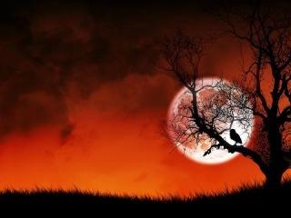 Странное дело. Чёрный Ворон степи (Часть 2 из 2) Барон Унгерн