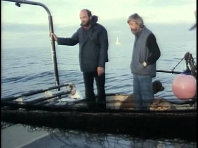54 - Одиссея Жака Кусто - Беспокойные воды