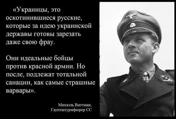На Донбассе еще не достигли того, чего хотели, - Меркель о выполнении минских соглашений - Цензор.НЕТ 7773