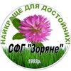 """Продажа семян и СЗР в Украине!!!  СФГ """" Зоряне """""""