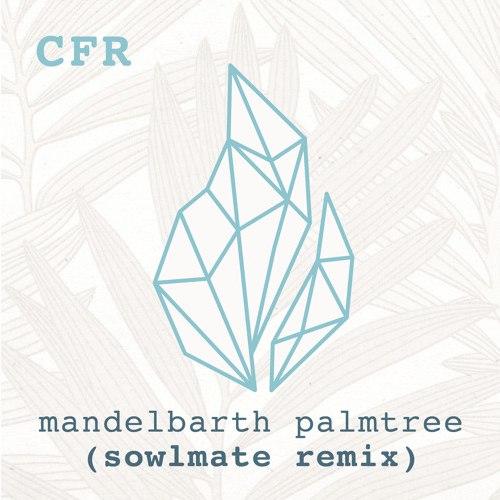 Mandelbarth - Palmtree (Sowlmate Remix)
