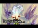 Видеоурок Гарри Дженкинса Lichtgevende Iris
