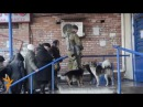 Debaltseve – Gunmen, Looting, And Bread Queues
